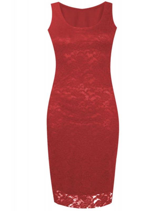 Blakely Plus Size Floral Lace Party Dress 16-22